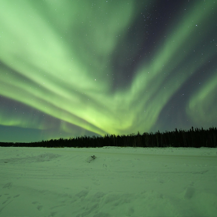 aurores boréales dans un paysage arctique