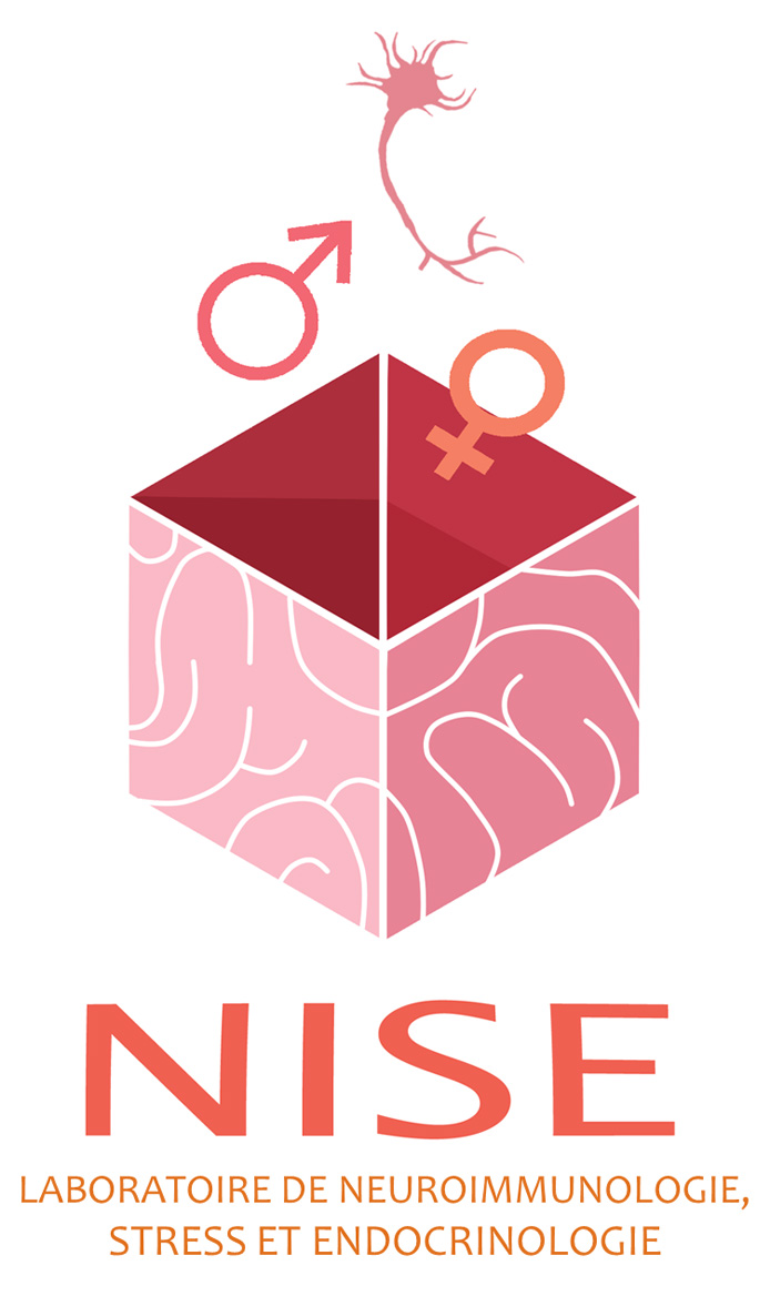 Logo du labo NISE en francais