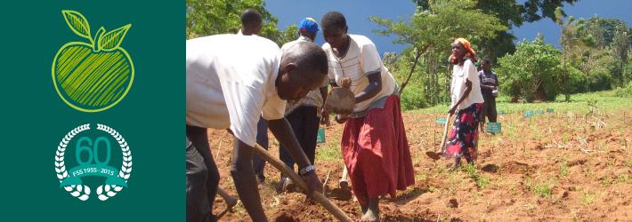 kenya workers in a field