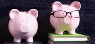 deux banque en forme de cochon sur des livres